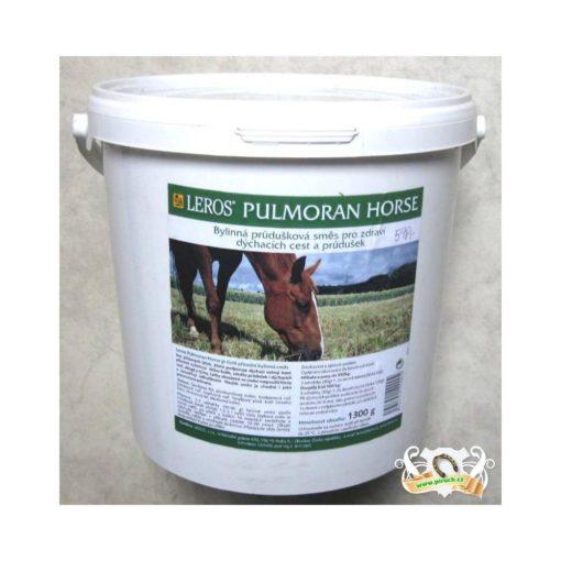 Leros PULMORAN Horse